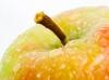 jabłko mini