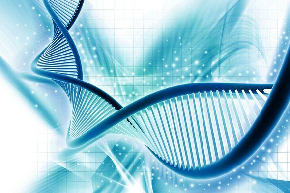 Komórki macierzyste - rewolucja w medcynie estetycznej