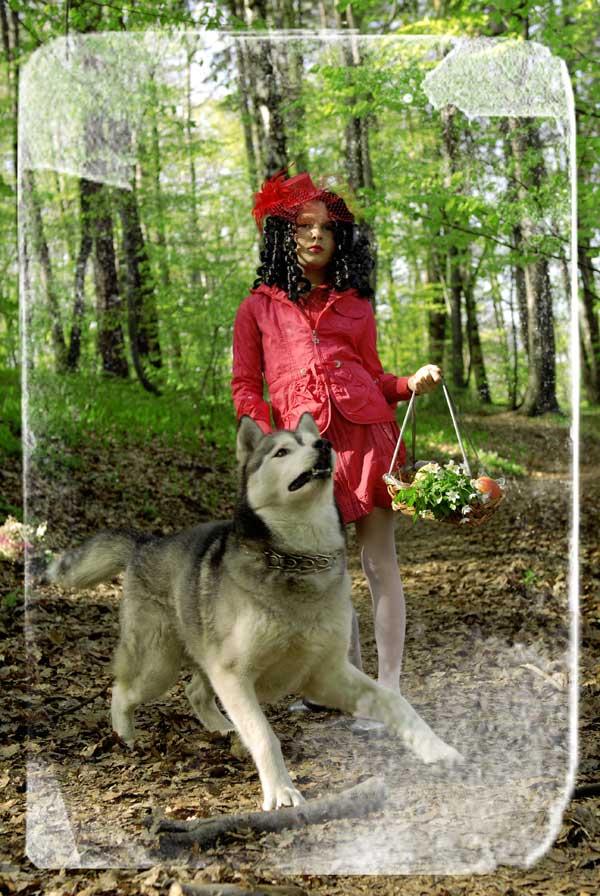 Czerwony Kapturek na zdjęciu: Olga z psem Silverem / fot. Marcin Urban
