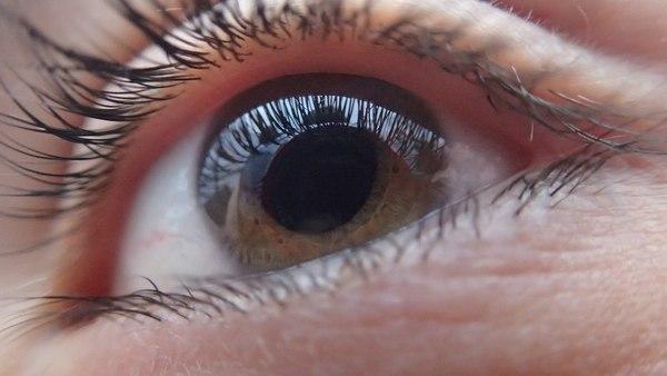 oczy krótkowzroczność diagnostyka wzrok badania