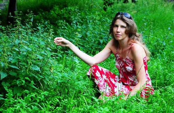 stokrotki chwasty dzikie rośliny fit eko