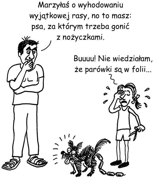 rys. Maciej Dziadyk