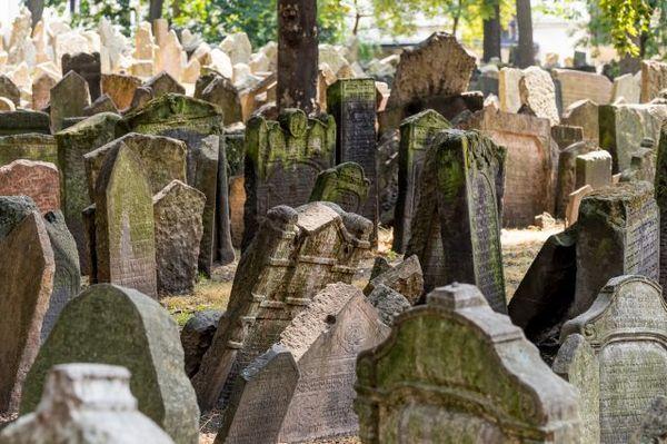 Najstarszy ocalały cmentarz żydowski w Europie / fot. materiały prasowe