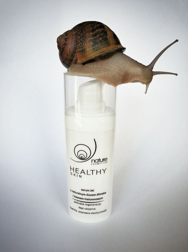 Nature Cosmetics: naturalny śluz ślimaka, pozyskiwany w bezpieczny sposób / fot. materiały prasowe