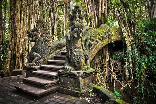 Monkey Forest (fot. Fotolia)