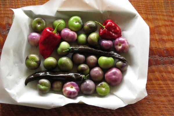 Jabłko, to dobry pomysł na świeżą, lekką przekąskę / fot. Coreen (unsplash.com)