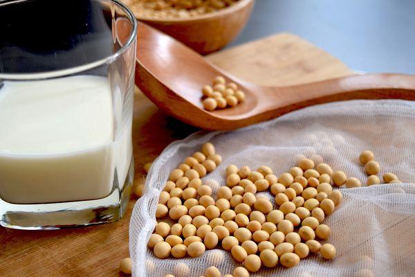 Z mleka sojowego zrobisz sojonez / fot. Pixabay