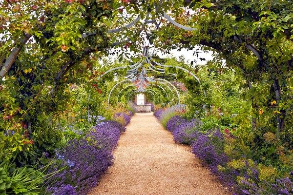 Zachwycający romantyzmem ogród w stylu angielskim / fot. materiały pr