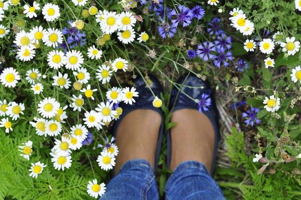 Wiosną koniecznie zrób porządek na półkach z butami! / fot. materiały prasowe