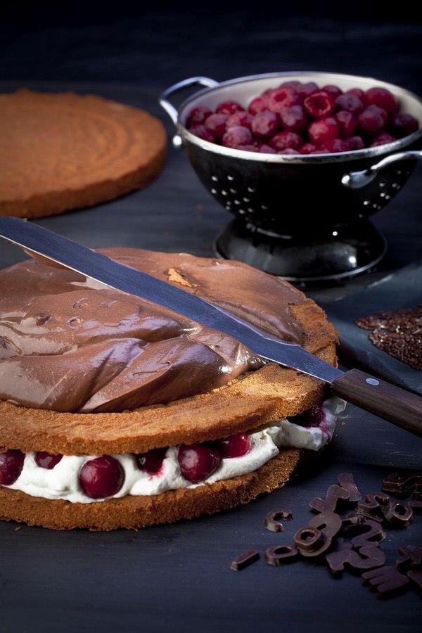 Zdrowy i smakowity tort! / fot. materiały prasowe