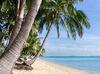 Tropical sand beach with coconut trees at the morning. Thailand, Samui island, Maenam.