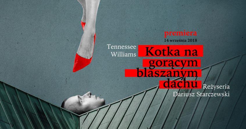 Plakat promujący spektakl Kotka na gorącym rozgrzanym blaszanym dachu w Teatrze Bagatela