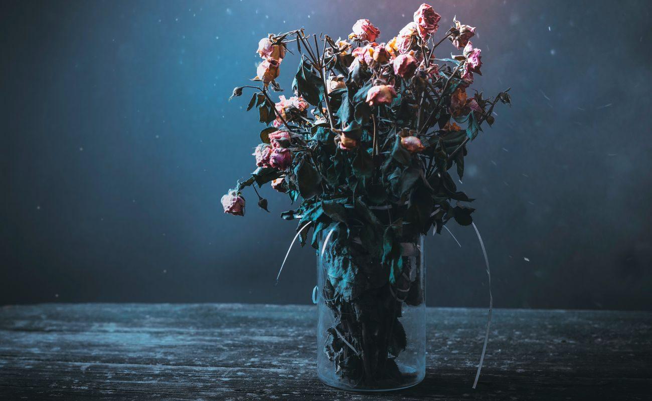 Więdnące kwiaty