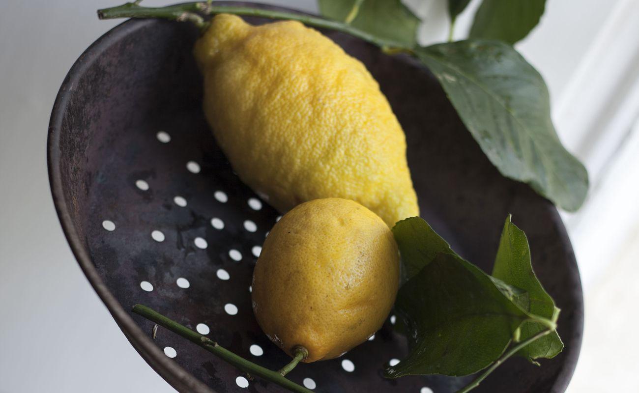Cytryny z Positivo Puglia