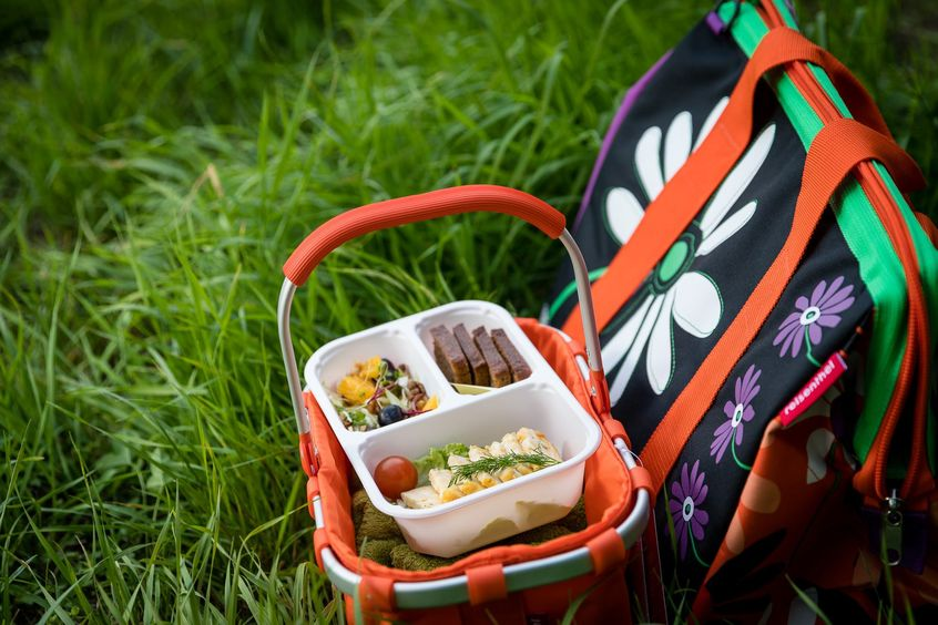 Pasztet jajeczny w piknikowym koszu, dieta LightBox