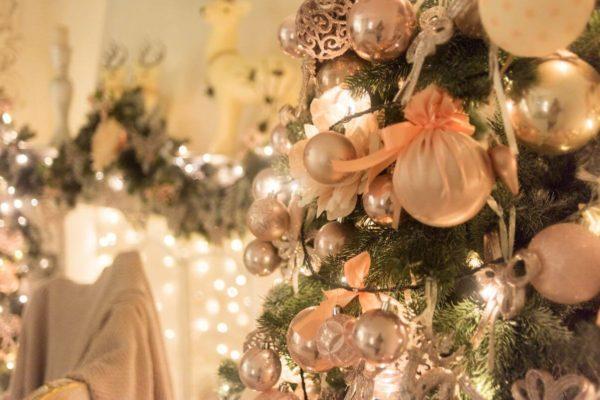 Choinki na Boże Narodzenie