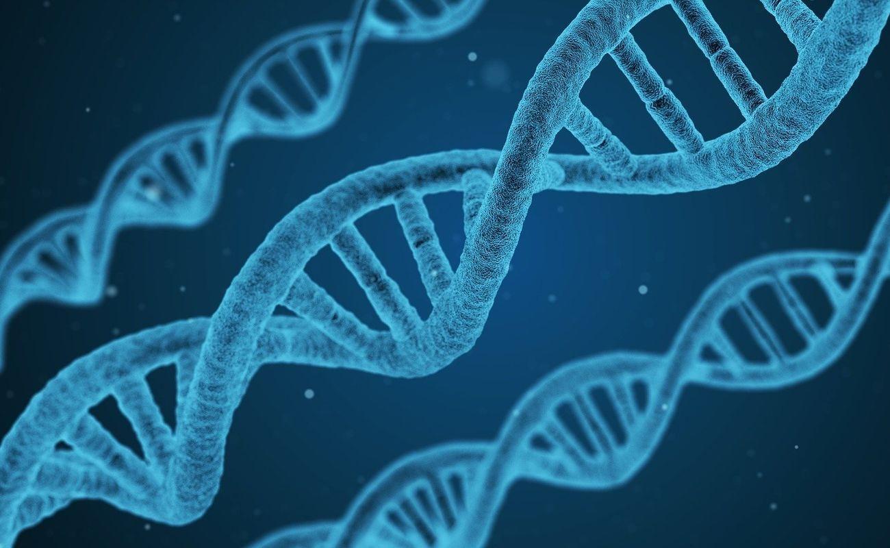 badania-nutrigenetyczne Miasto Kobiet portal dla kobiet